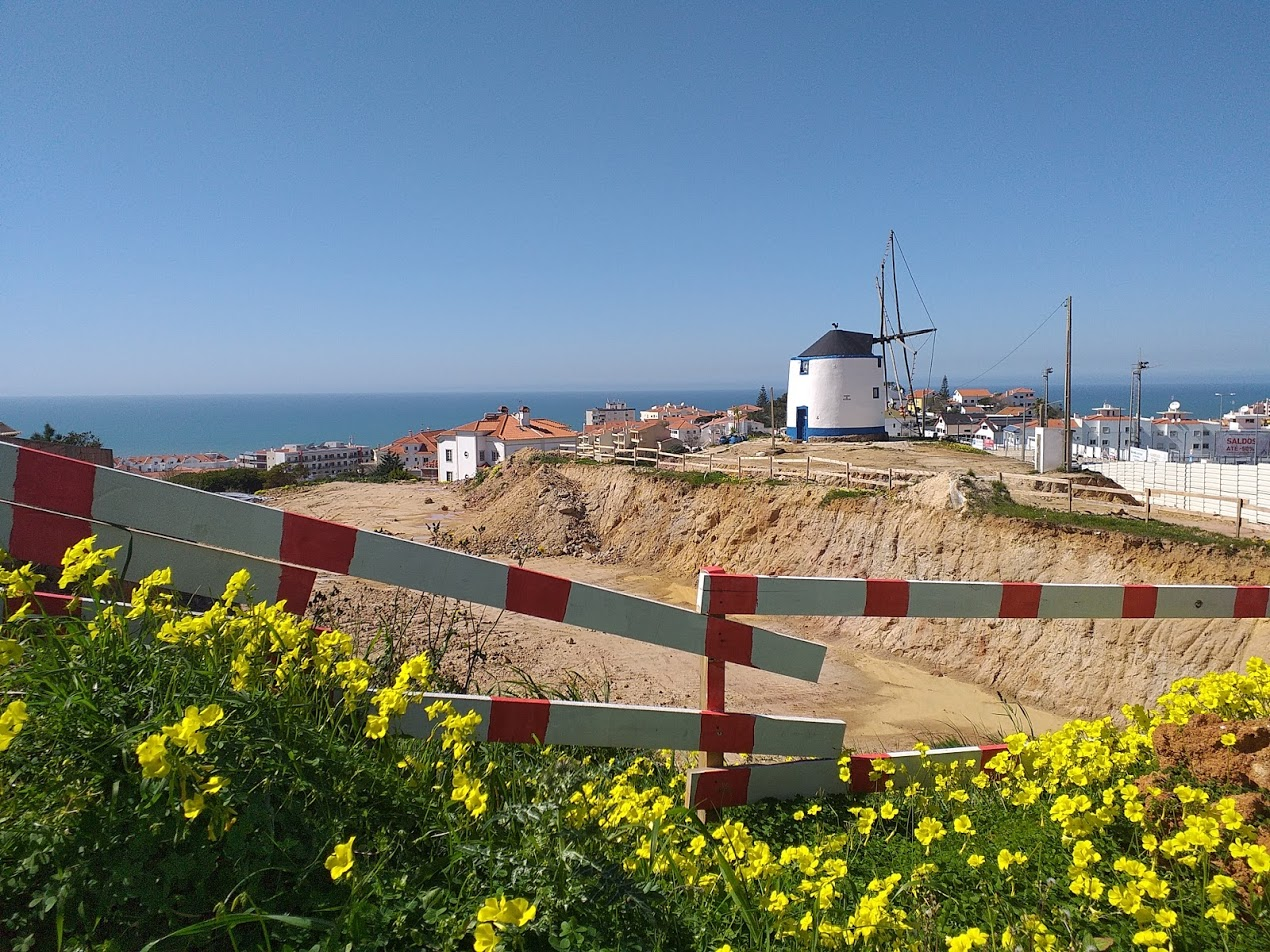 Renting in Ericeira: know what to do