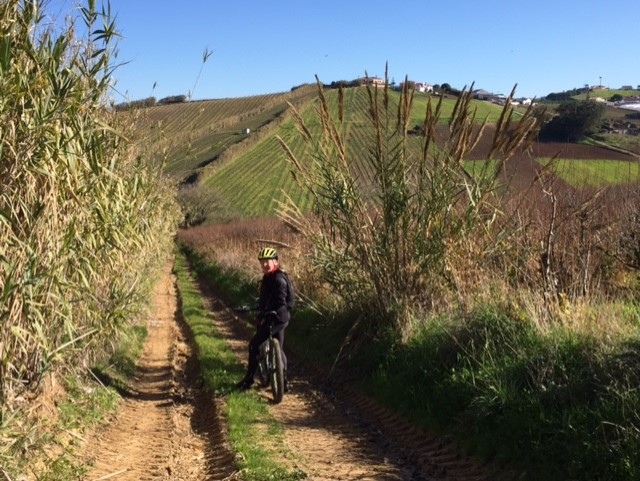 Mountain biking (BTT) trail across fields Ericeira