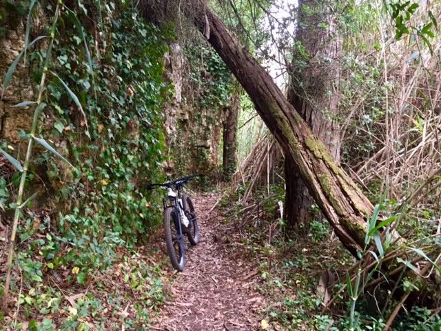 Bike on a beautiful trail in Ericeira