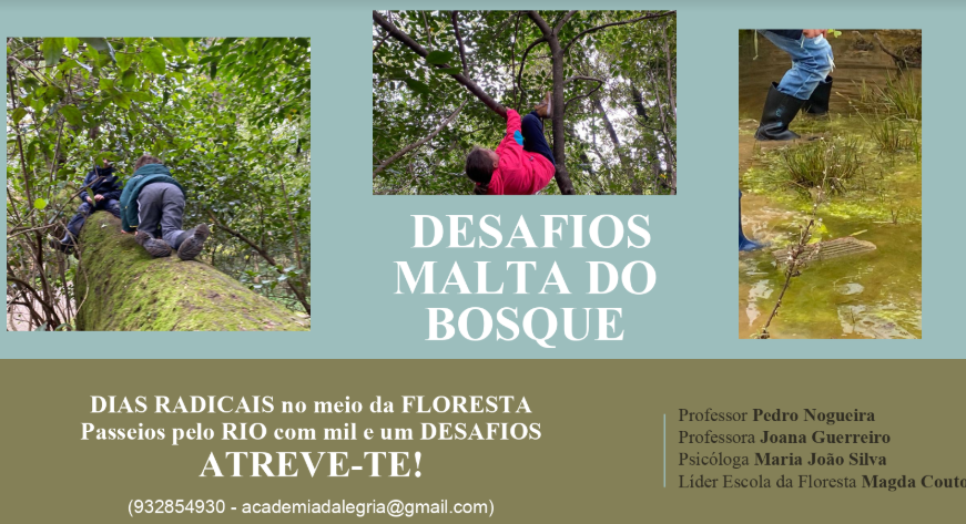 Academia da Alegria Forest School  Summer activities 2020 flyer