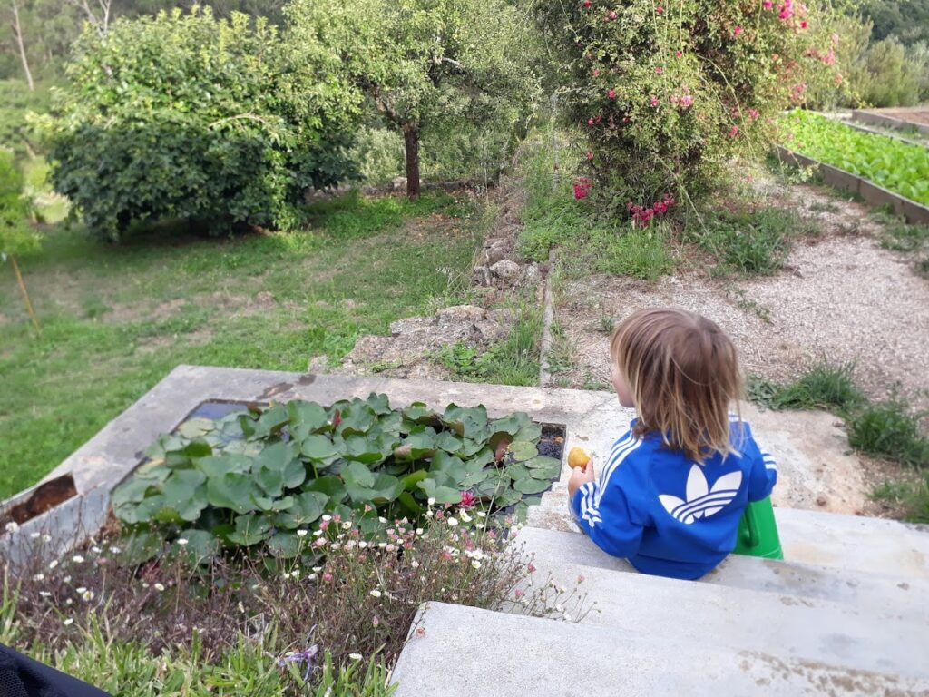 boy in the garden, pond and vale view